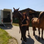 Les chevaux murmurent 009