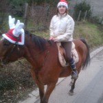 Noël 2012 006
