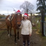 Noël 2012 003